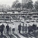 Artikler fra syd for banen i Historisk Samfunds årbog
